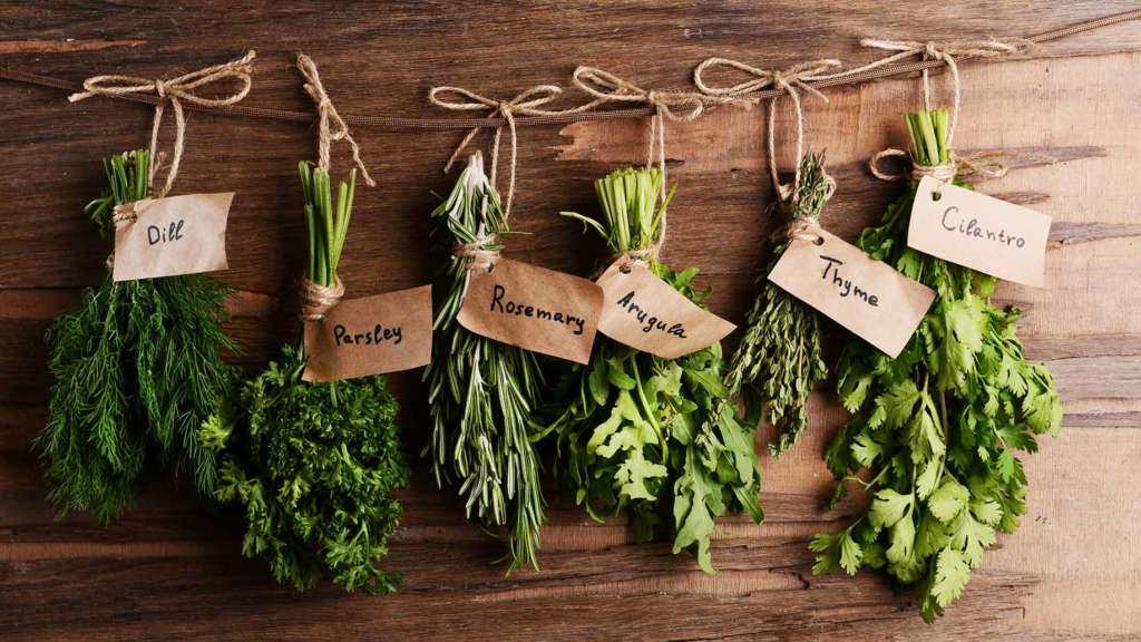 best herbs for indoor herb garden