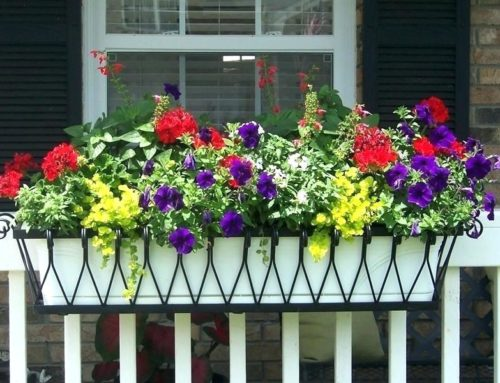 8 Easy Outdoor Home Staging Tweaks The Won't Break the Bank