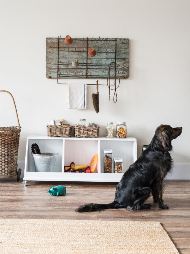 home organization with pets