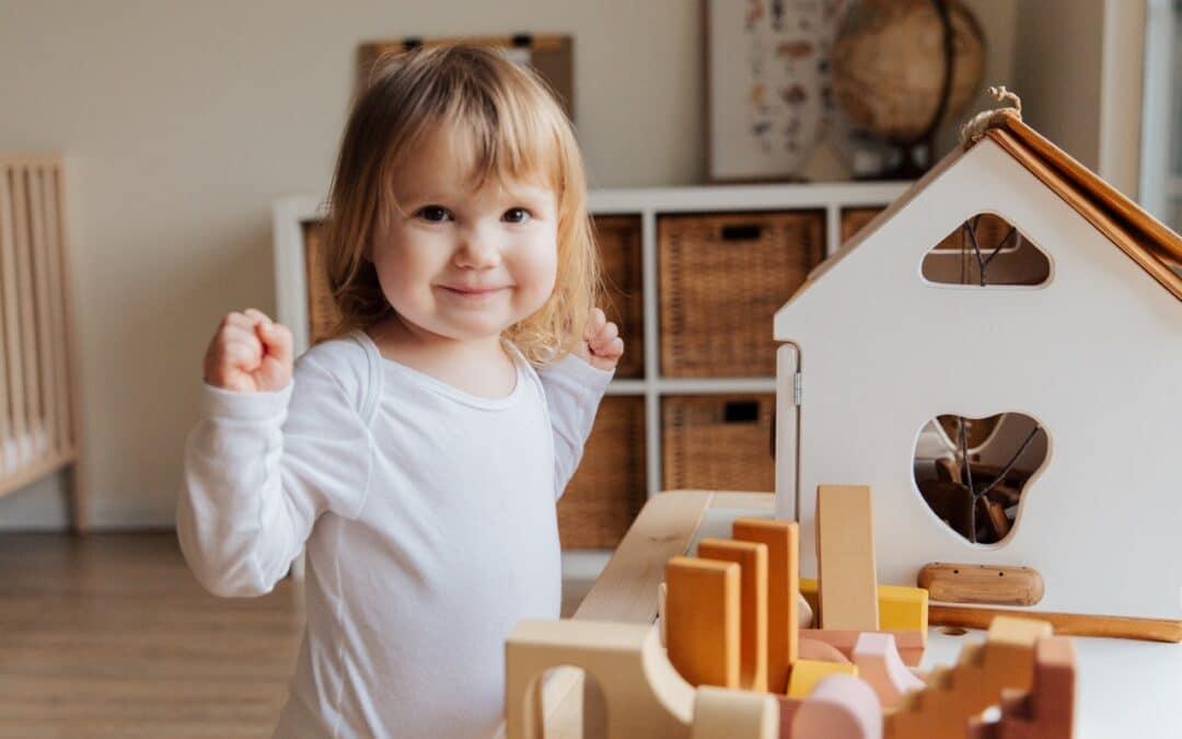 10 Top Reasons for Playroom Organization